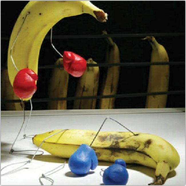 Bananas que boxean