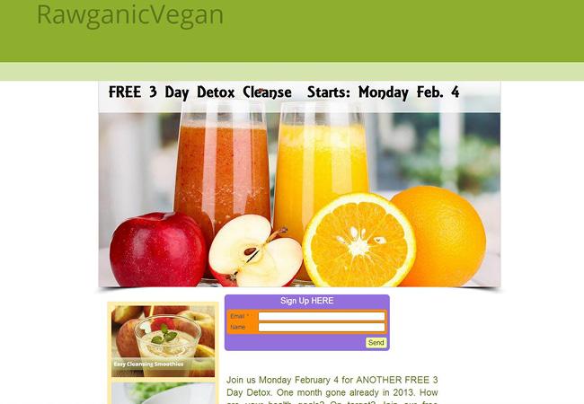 Sitio Web Rawganic Vegan
