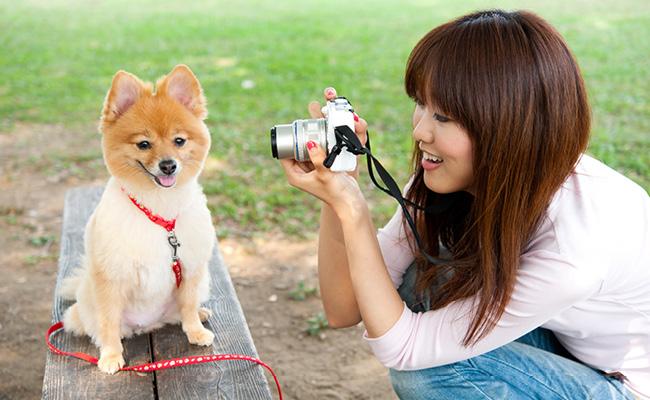 Joven toma fotografía de un perro