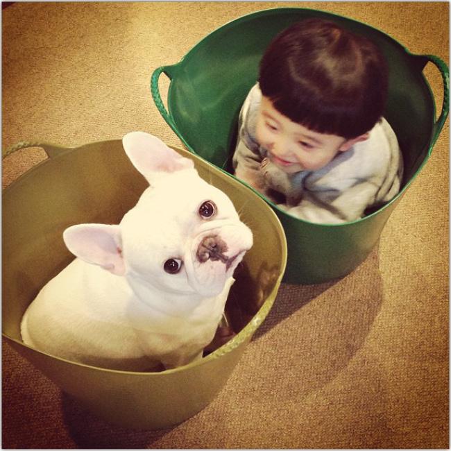 Pequeño niño oriental dentro de un valde verde y jugando con su perro blanco. Instagram de ayasakai