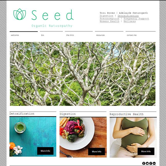 Captura de Pantalla del Sitio Wix de Seed Organic