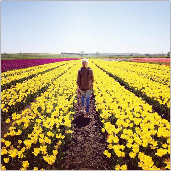 Mujer caminando de espaldas por un campo de flores amarillas.