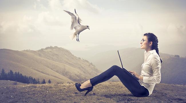 Mujer sentada en un campo con un pájaro volando sobre ella