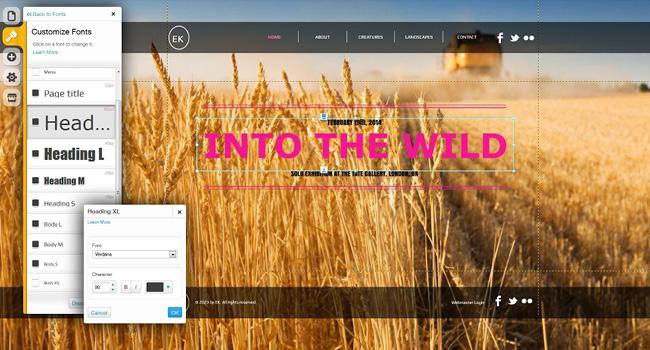Pantallazo del editor de fuentes del Editor HTML5