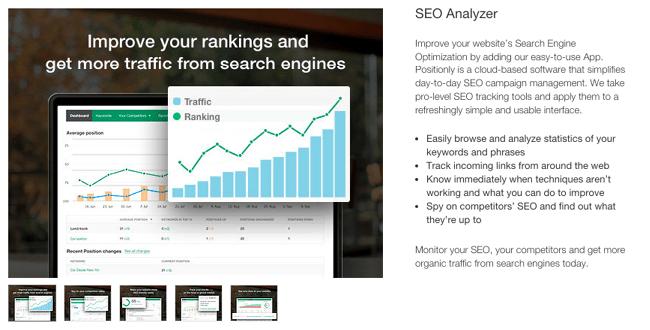 Página principal de la aplicación SEO Analyzer