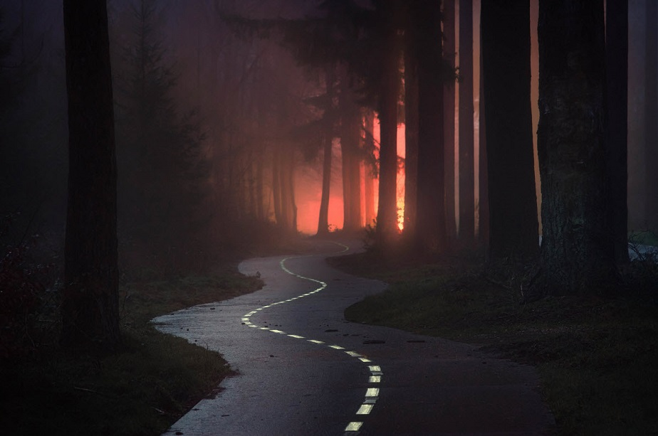 Carretera Zig-Zag en el bosque