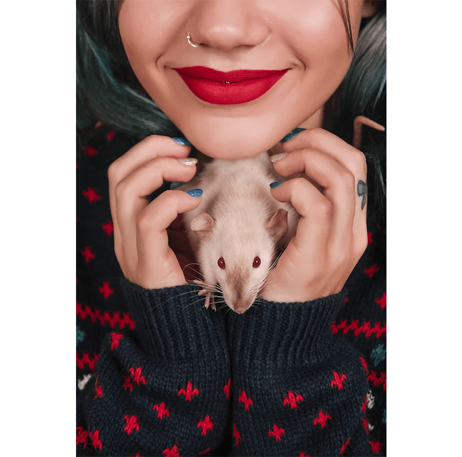 Fotografía de Mascotas Wix por Javier-Retales-Botijero