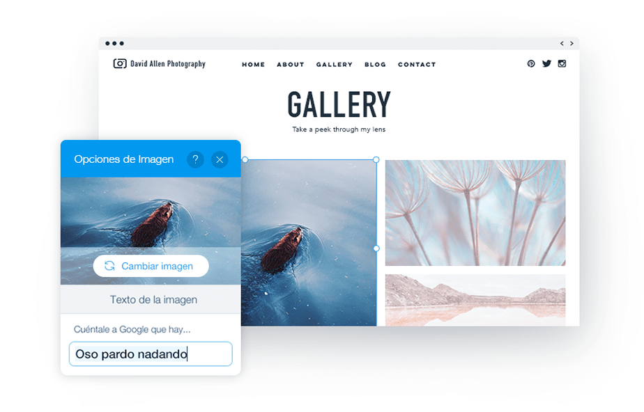 Mejorando la accesibilidad de tu página web: Agrega Alt Text