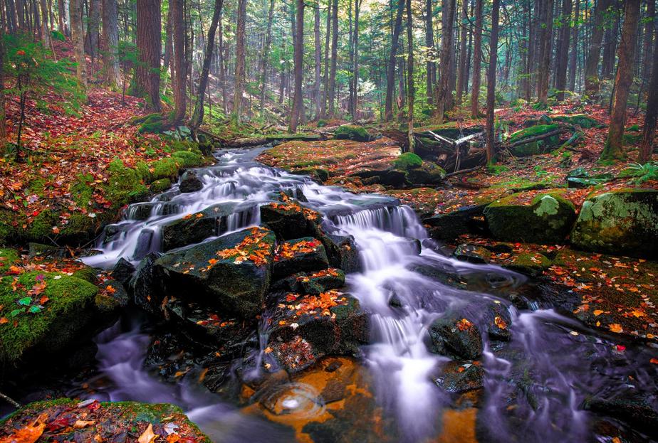 Adirondack Park, NY, United States